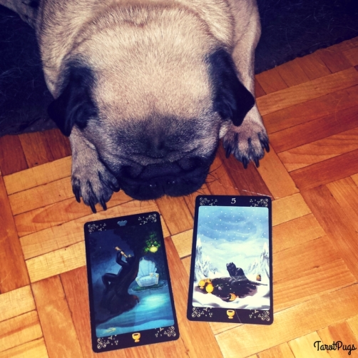 Black Cats TarotPugs 4