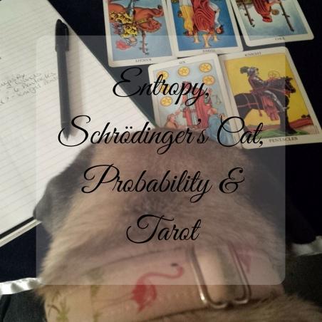 Entropy, Schrödinger's Cat, Probability & Tarot