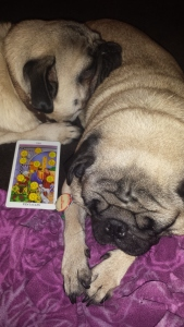 tarotpugs ten pentacles