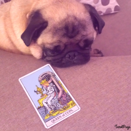 Queen of Cups TarotPugs