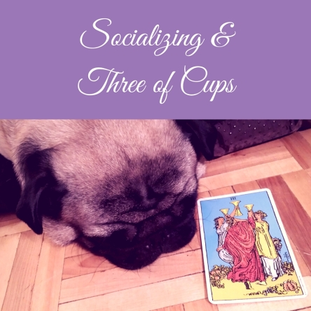 Social Gatherings & Three of Cups