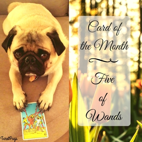 Card ofthe Month