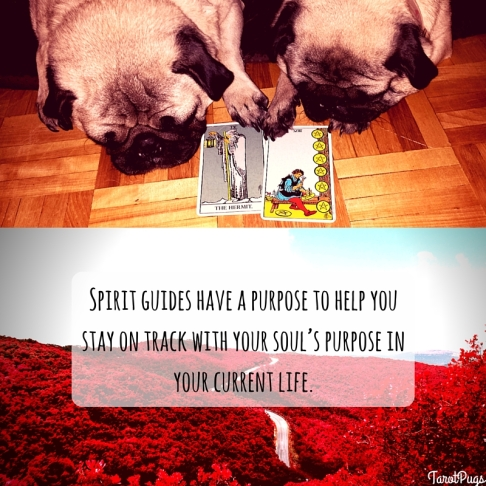 tarotpugs spirit guides 2