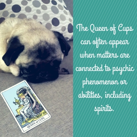 The Queen of Cups can often appear when matters are connected to psychic phenomenon or abilities, including spirits.