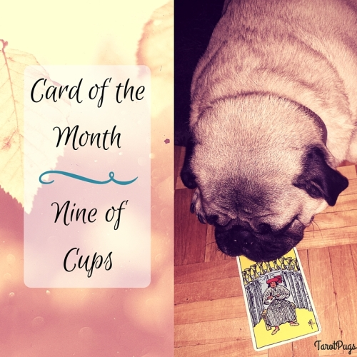 Card of the Month Nine of Cups Pug August 2016