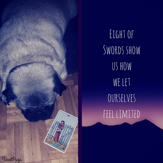 Eight of Swords TarotPugs