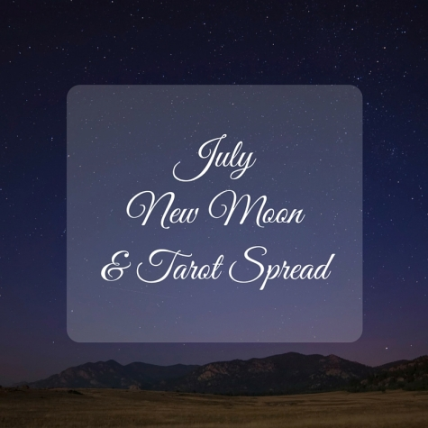 July New Moon & Tarot Spread TarotPugs