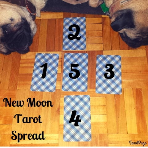 New Moon Tarot Spread TarotPugs
