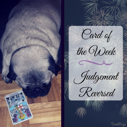 Card ofthe Week Judgement Reversed TarotPugs