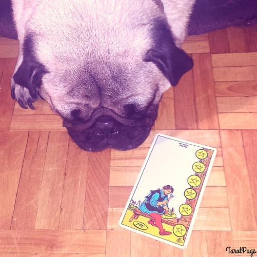 Eight of Pentacles Tarot Pugs Chronic Illness
