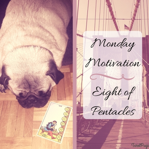 Monday Motivation Eight of Pentacles TarotPugs