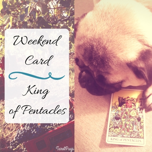 Weekend Card King of Pentacles TarotPugs
