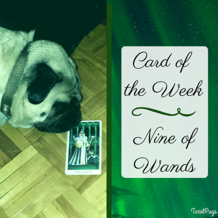 card-of-the-week