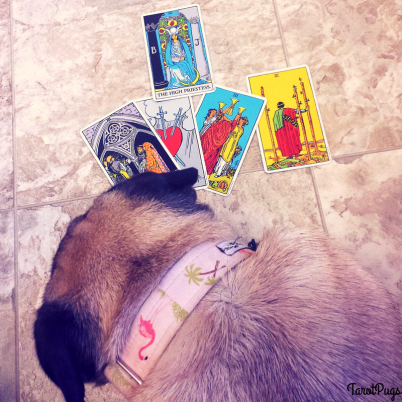 hecates-tarot-assoiciation-tarotpugs