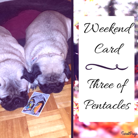 weekend-card-three-of-pentacles-tarotpugs