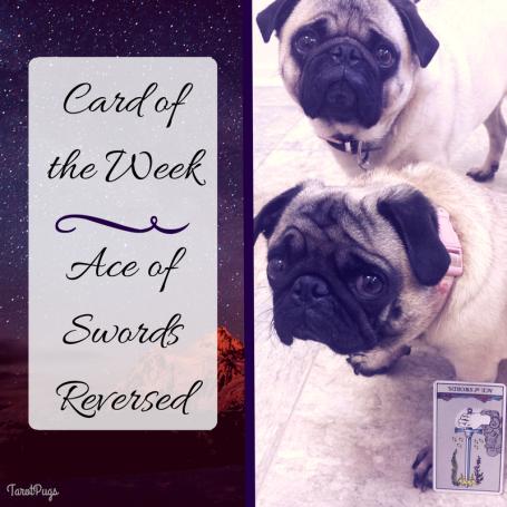 card-of-the-week-ace-of-swords-reversed