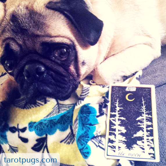 crossroads magick witchcraft tarot pugs hecate
