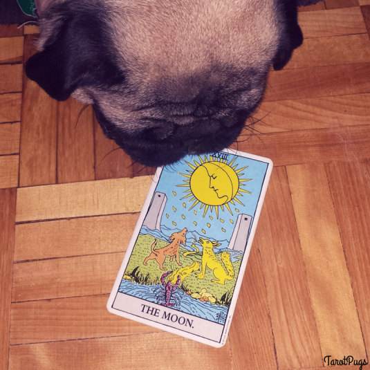 the moon tarotpugs pug tarot shadow self shadow side shadow aspect