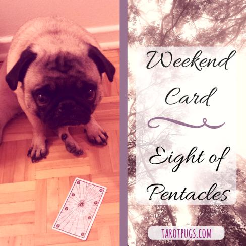 weekend-card-eight-of-pentacles-november-2016-tarotpugs