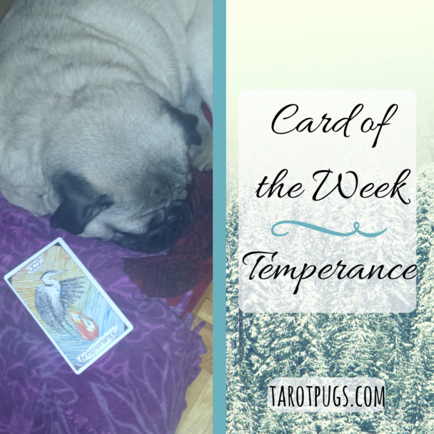 card-of-the-week-temperance-2016