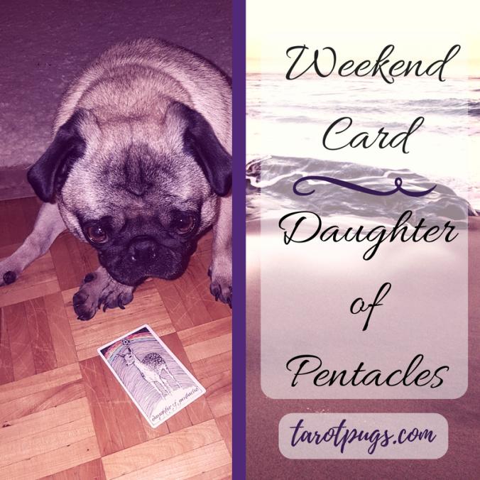 weekend-card-daughter-of-pentacles-tarotpugs