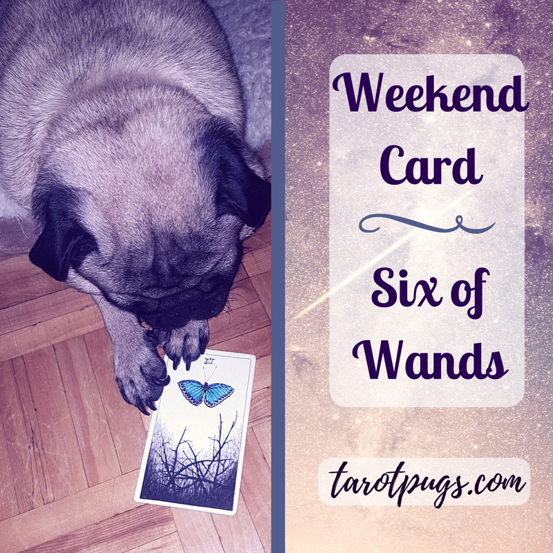 Tarot Pugs TarotPugs Wild Unknown Weekend Friday Six Wands