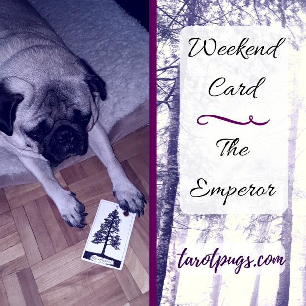 TarotPugs Tarot Pugs The Emperor Wild Unknown Tarot