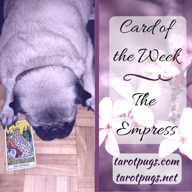 Tarot Pugs TarotPugs The Empress Card of the Week Taurus Venus