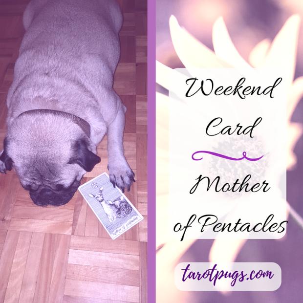 Tarot Pugs TarotPugs Pentacles Queen Mother of Pentacles Weekend Card