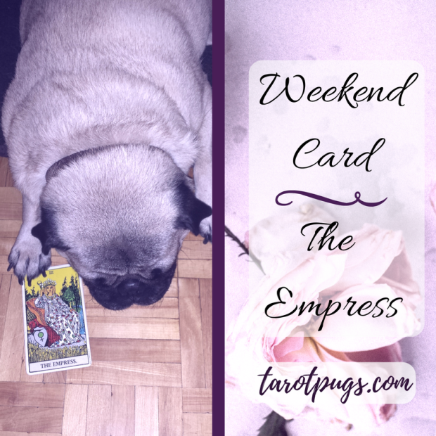 Tarot Pugs TarotPugs The Empress Weekend Venus