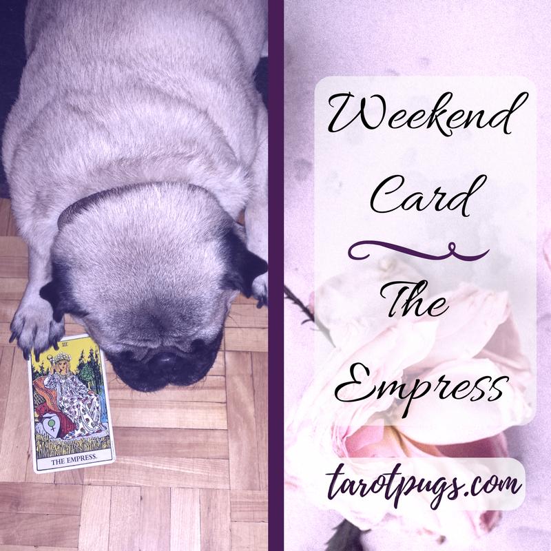 Tarot Pugs TarotPugs The Empress Weekend Venus
