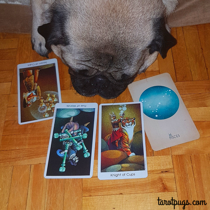 Weekly Reading Tarot Pugs TarotPugs