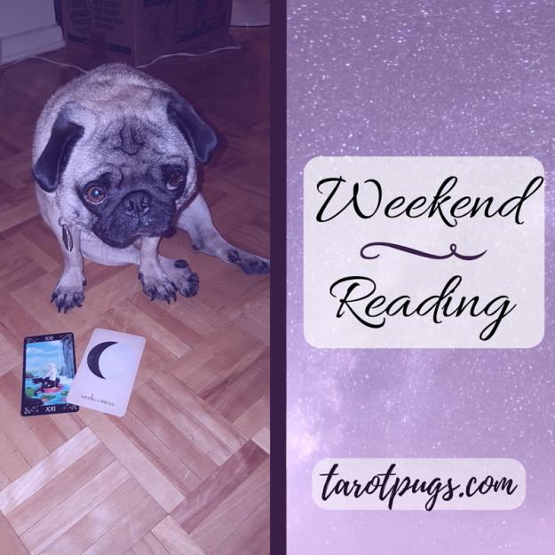 Weekend Reading Tarot TarotPugs Arcana of Astrology Black Cats Tarot Pugs Pug