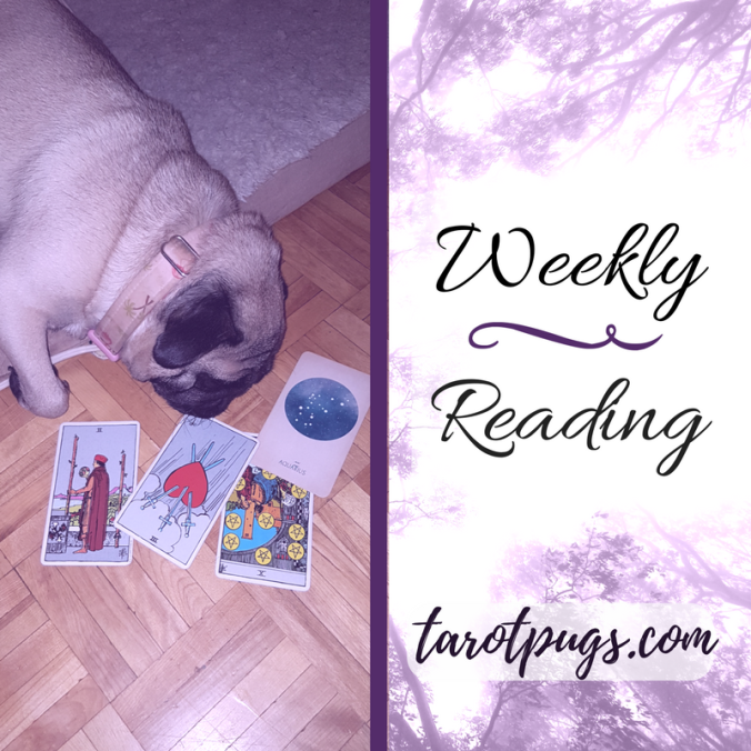 TarotPugs Tarot Pugs Rider Waite Smith Arcana Astrology June 5 - 11 2017
