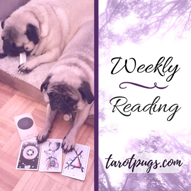 Weekly Reading Tarot Pugs TarotPugs Arcana of Astrology The Wild Unknown Tarot