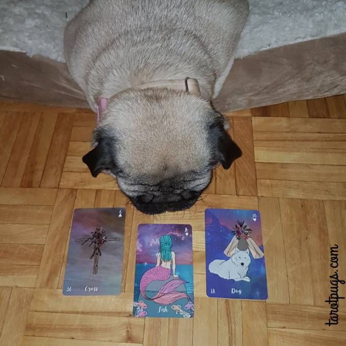 Tarot Pugs TarotPugs Pug Lenormand Cross Fish Dog