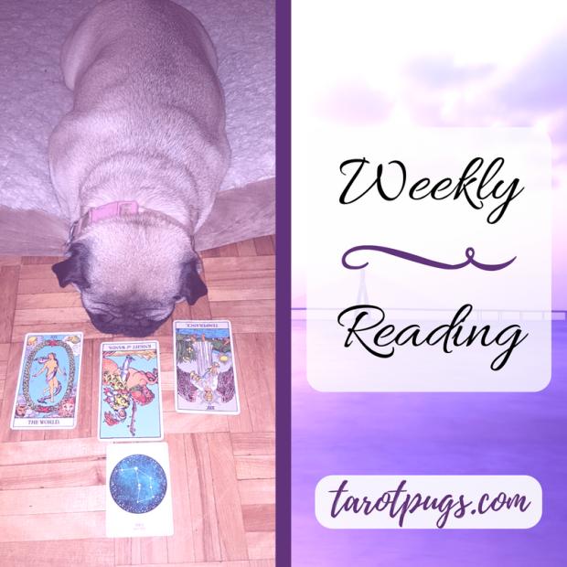 TarotPugs Tarot Pugs Weekly Reading Compendium of Astrology Rider Waite Smith RWS Pug