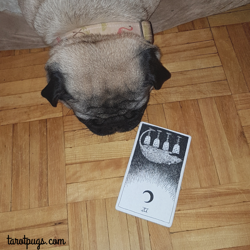 Four 4 Cups Wild Unknown Tarot TarotPugs Tarot Pugs Pug Weekly Reading