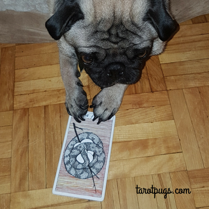 TarotPugs Tarot Pugs Pug Mother Wands Wild Unknown