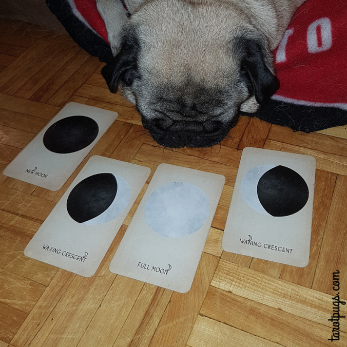 Arcana of Astrology Moon Phases TarotPugs Tarot Pugs
