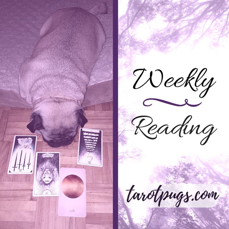 Tarot Pugs TarotPugs Weekly Reading August 2017 Arcana Astrology Wild Unknown Tarot