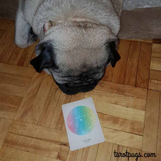 Astrology Compendium of Constellations TarotPugs Tarot Pugs
