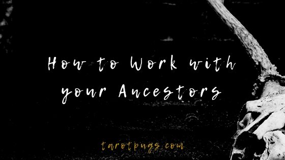 Learn how to work with your ancestors in magick and witchcraft.
