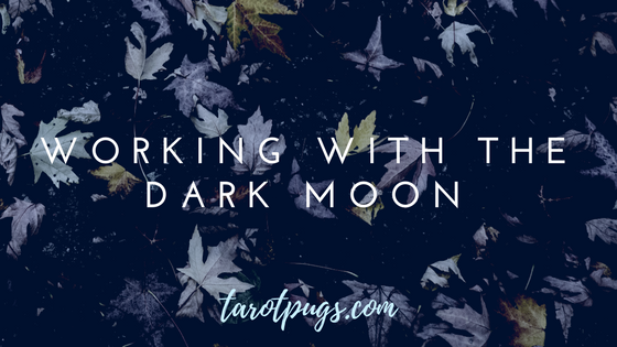 Learn how to work with the Dark Moon phase in your practice, Witchcraft, and more.