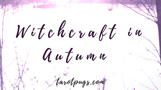 Witchcraft in Autumn: Pumpkins, trees, leaves, apples, protection magick for autumn, Mabon and Samhain. #witch #witchcraft #samhain #mabon