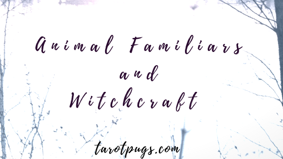 Find out how to work with animal familiars (physical and spirit) in witchcraft.