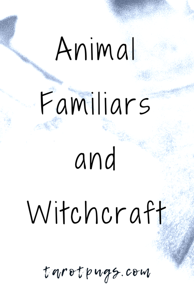 Find out how to work with animal familiars in witchcraft - physical and spirit familiars.