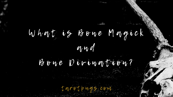 Find out more about bone magick and bone divination. #witchcraft #magick