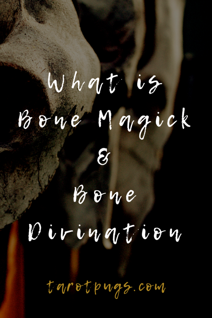 Learn what bone magick is and how bones are used in divination. #witchcraft #divination