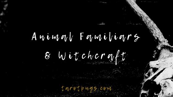 Animal Familiars and Witchcraft | TarotPugs